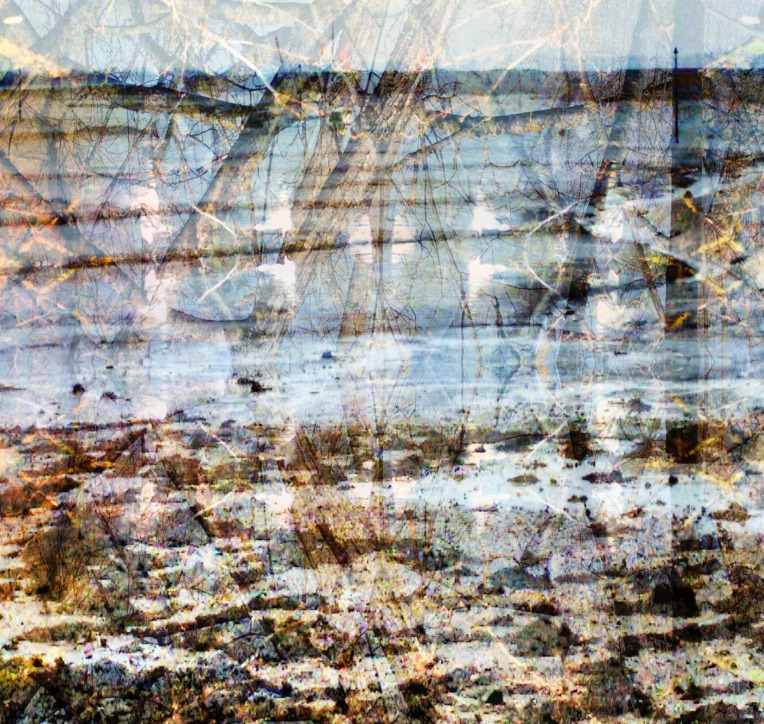 shoreline view 9