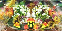 june blossoms 5