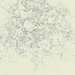 traces 19